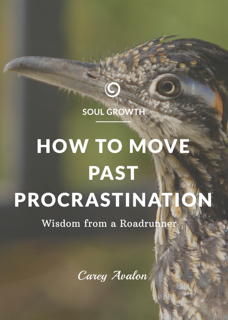 move past procrastination
